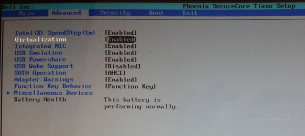 enable-hardware-virtualizat