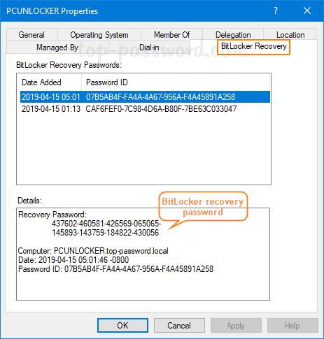 2 Methods to Install BitLocker Recovery Password Viewer for