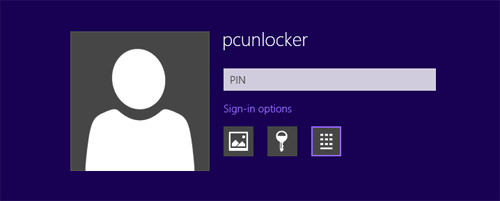 Windows 8 Sign-in Options